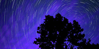 Royalty-Free and Rights-Managed Images - Star Trails In the Night Sky Panorama by Gregory Ballos