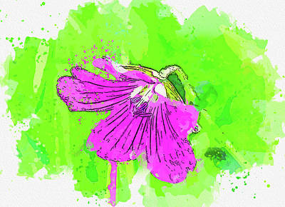 Royalty-Free and Rights-Managed Images - Still Life - Flower of Eden - 10, watercolor, by Ahmet Asar by Celestial Images