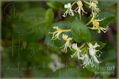 Achieving - Stop and Smell the Honeysuckle by Sandra Clark