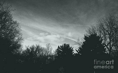 Frank J Casella Royalty-Free and Rights-Managed Images - Storm Above the Pine - Silver by Frank J Casella