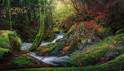Photograph - Stream Of Light by Francisco Crusat