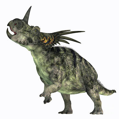 Achieving - Styracosaurus Dinosaur over White by Corey Ford
