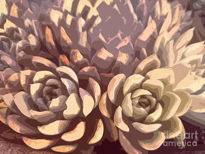 Photograph - Succulents 2 by Tracey Lee Cassin