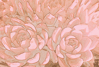 Digital Art - Succulents 5 by Tracey Lee Cassin