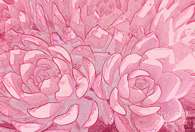 Digital Art - Succulents 7 by Tracey Lee Cassin