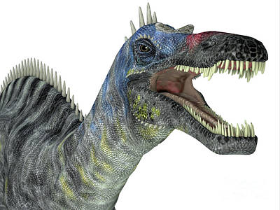 Achieving - Suchomimus Dinosaur Head by Corey Ford