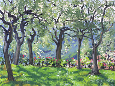 Painting - Summer at olive grove by Constanza Weiss