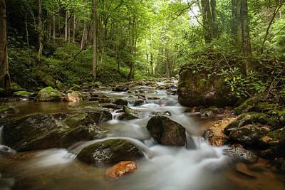 Granger - Summer Creek 3 by Shannon Millsaps