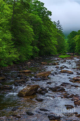 World War 2 Action Photography - Summer Flow along Cranberry River by Thomas R Fletcher