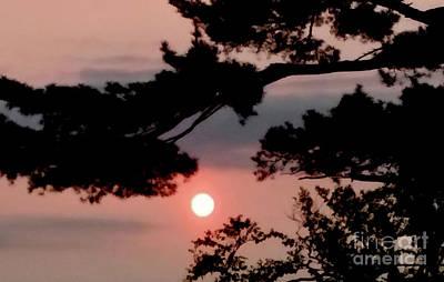 Landscapes Kadek Susanto - Sun Descending by Maurice Hebert