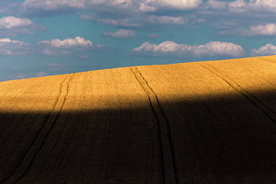 Everett Collection - Sun Hit the Land by Evgeni Dinev