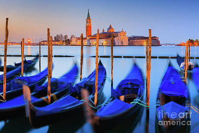 Animal Paintings David Stribbling Royalty Free Images - Sunrise in Venice, Italy Royalty-Free Image by Henk Meijer Photography