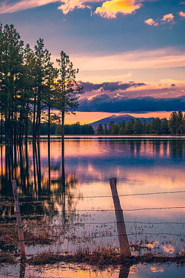 Wild And Wacky Portraits Rights Managed Images - Sunset on a Forest Lake Royalty-Free Image by Bonny Puckett