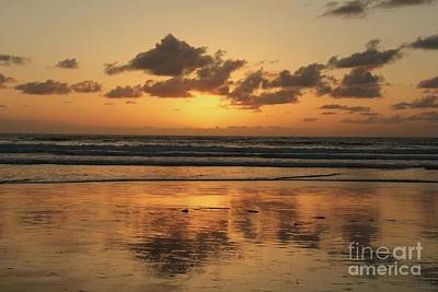 Water Droplets Sharon Johnstone - Sunset Reflection on West Coast  by Diane Greco-Lesser