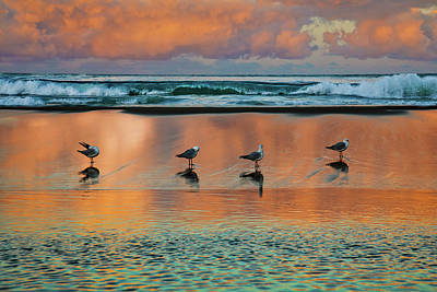 Royalty-Free and Rights-Managed Images - Sunset Reflections by Az Jackson