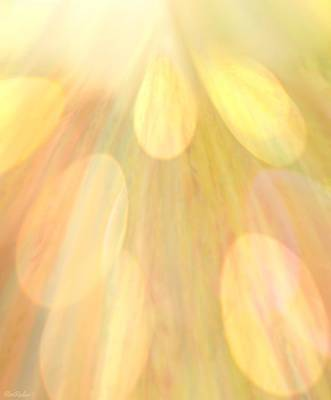 Rights Managed Images - Sunshine On My Shoulder Royalty-Free Image by Roe Rader