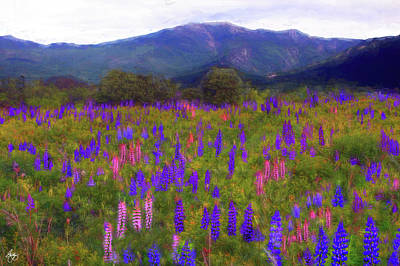 Surrealism Royalty-Free and Rights-Managed Images - Surreal Light on Franconia Ridge by Wayne King