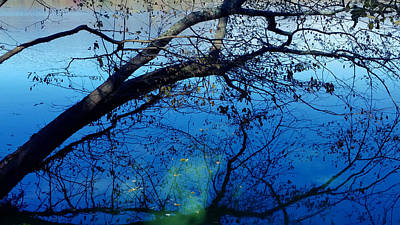 Surrealism Royalty-Free and Rights-Managed Images - Surreal Reflections on Radnor Lake  by Ally White
