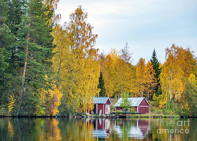Just Desserts Rights Managed Images - Swedish Autumn 5 Royalty-Free Image by Torfinn Johannessen