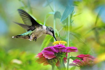 Animals Photos - Sweet Success by Christina Rollo