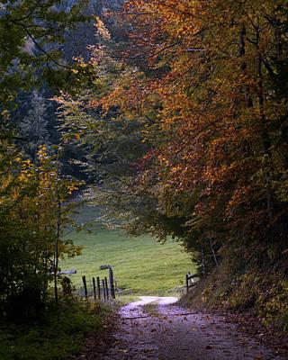 Photograph - Switzerland 37 by Marcio Faustino