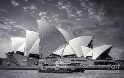 Royalty-Free and Rights-Managed Images - Sydney Opera House Black and White - Australia by Stefano Senise