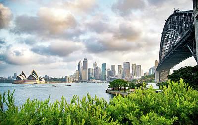 Animal Surreal - Sydney Skyline and Bridge by Nate Hovee