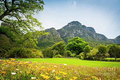 Royalty-Free and Rights-Managed Images - Table Mountain Cape Town South Africa by THP Creative