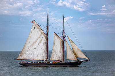 Antlers - Tall Ship Bluenose II by Dale Kincaid