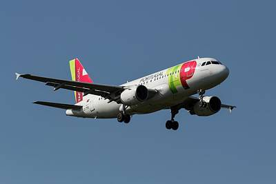 Kitchen Spices And Herbs - TAP Air Portugal Airbus A319       X2 by David Pyatt