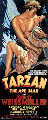 Mixed Media Royalty Free Images - Tarzan the Ape Man, with Johnny Weissmuller, 1932 Royalty-Free Image by Stars on Art