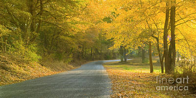 Photograph - Tennessee backroad in Morning Sun in Autumn by Ranjay Mitra