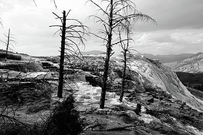 Travel Rights Managed Images - Terraces, Yellowstone NP Royalty-Free Image by Aashish Vaidya