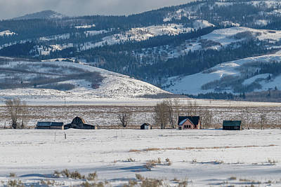 Photograph - Tetons Mormon Row in Winter I by Douglas Wielfaert