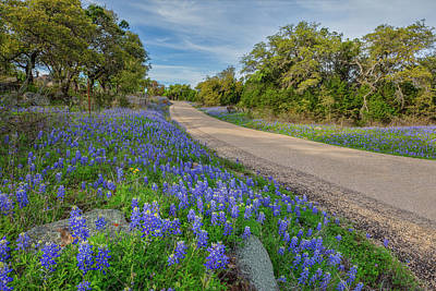 Cartoons Tees - Texas Hill Country Bluebonnet Drive 3281 by Rob Greebon