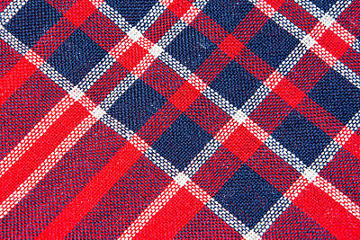 School Teaching - Texture of red and blue a checkered woolen fabric by Julien
