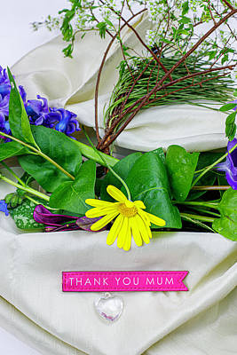 Photograph - Thank You Mum 4 by Mike Molloy Photo