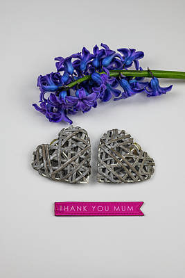 Photograph - Thank You Mum by Mike Molloy Photo