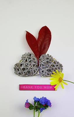 Photograph - Thank You Mum with Flowers 2 by Mike Molloy Photo