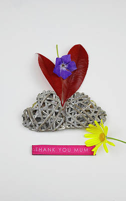 Photograph - Thank You Mum with Flowers by Mike Molloy Photo