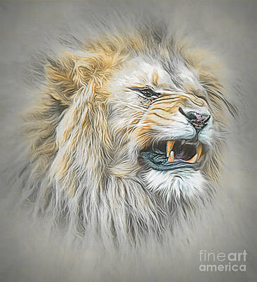 Animals Royalty-Free and Rights-Managed Images - The Angry Lion by Brian Tarr