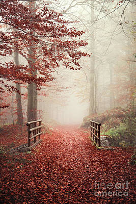 Royalty-Free and Rights-Managed Images - The Autumn Of Chasing Dreams by Evelina Kremsdorf