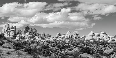Winter Animals - The Big Sky of Joshua Tree NP - Black and White by Peter Tellone
