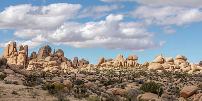 Pasta Al Dente Royalty Free Images - The Big Sky of Joshua Tree NP Royalty-Free Image by Peter Tellone
