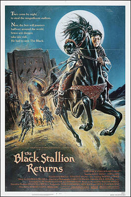 Sheep - The Black Stallion Returns poster 1979 by Stars on Art
