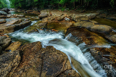 Sean Rights Managed Images - The Falls of Williams River  Royalty-Free Image by Thomas R Fletcher