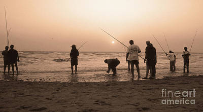 Animals Royalty-Free and Rights-Managed Images - The Fish Have Hit The Beach by Skip Willits