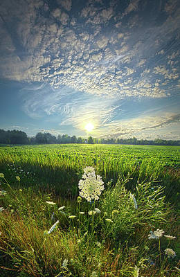 Wild Weather - The Great Wide Open by Phil Koch