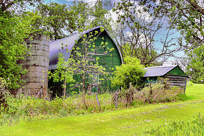 Rose - The Green Barn by Susan Buscho