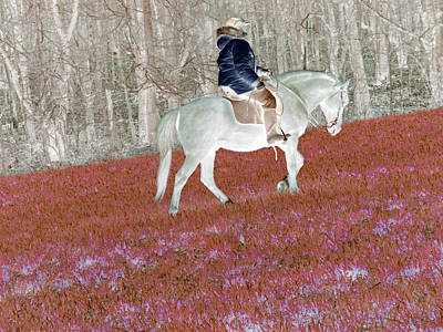 Animals Royalty-Free and Rights-Managed Images - The Horse I Ride In My Dreams by Patricia Keller